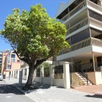 East Perth, 7/22 Nile Street – Sold